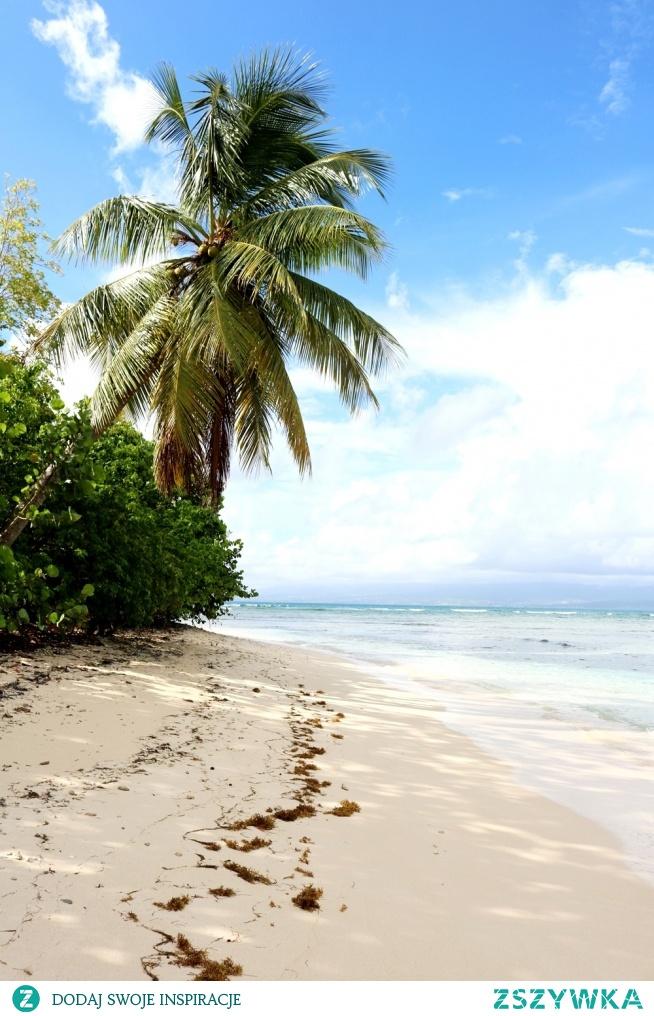 Gwadelupa - rajska wyspa - co zobaczyć, co zwiedzić? Blog Wyspa Inspiracji