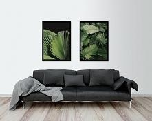 Dwa plakaty - Exotic
