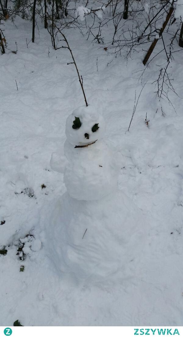 Zimowe wspomnienia. Spotkałem kumpla podczas spaceru w lesie