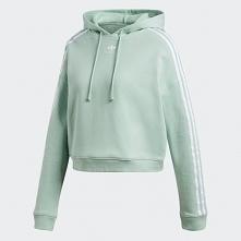 hoodie adidas BLUSH GREEN