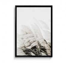 Białe trawy plakat