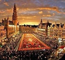 Bruksela - Belgia