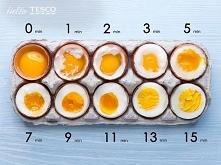 Czas na jaja