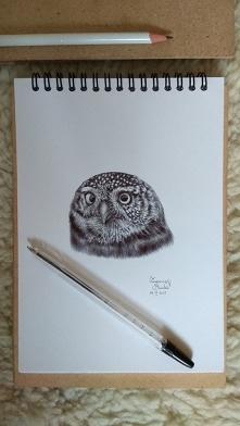 Mój rysunek, sowa, długopis...