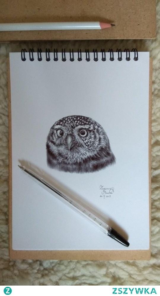 Mój rysunek, sowa, długopis na papierze :) ig: @suzanne.musial
