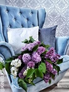 bez dodatki poduszki wnętrze fotel dekoracje dom maj inspiracje