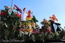 Parada Kwiatów 2019 w Funch...