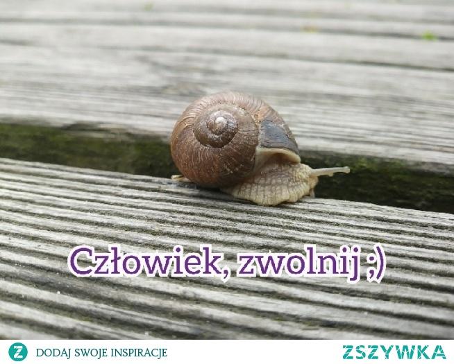 spiesz sie powoli :)
