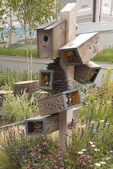 Hotel dla robaczków  i kawalerka dla ptaszka .Mam nadzieję, że koty chodzą swoimi ścieżkami.