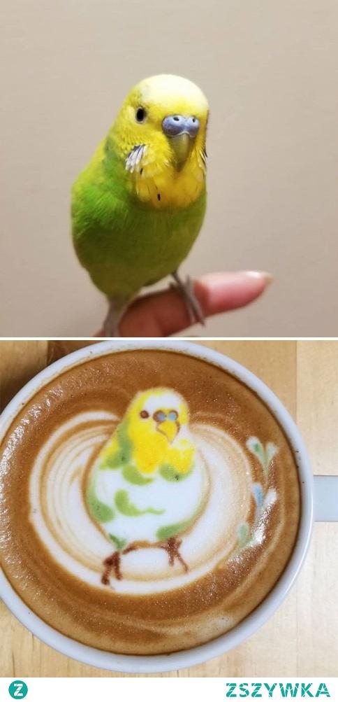 Zapraszam na kawę ♥️