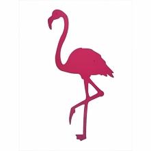 Dekoracja ścienna z metalu Flaming firmy FLOXXY to przepiękny ptak w różowym kolorze RAL 4010. ptak Flaming Idealna dekoracja na ścianę w kolorze, który odświeży i nada charakte...