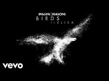 Imagine Dragons - Birds (Au...