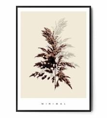 Plakat GRASS MINIMAL FOX AR...