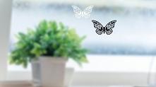 Motylki, które możesz zawie...