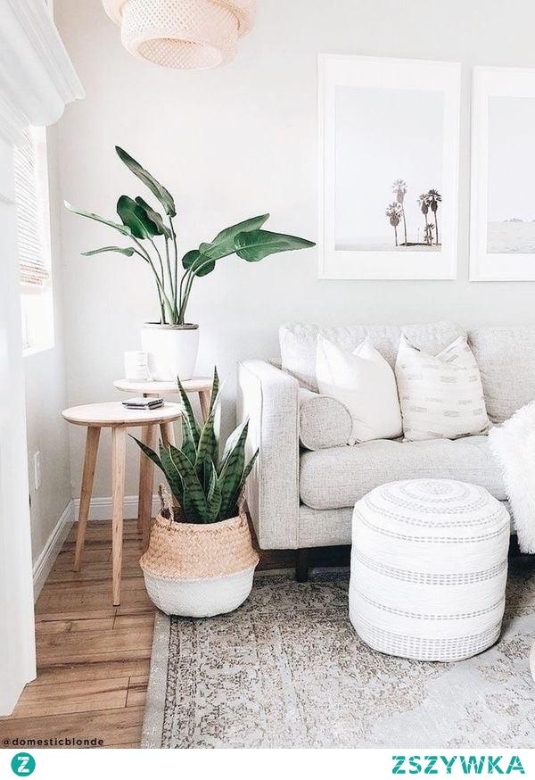 rośliny są dla mnie nieodzowną częścią domu <3