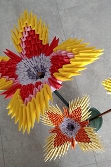 Kwiaty z origami, zdjęcia i...