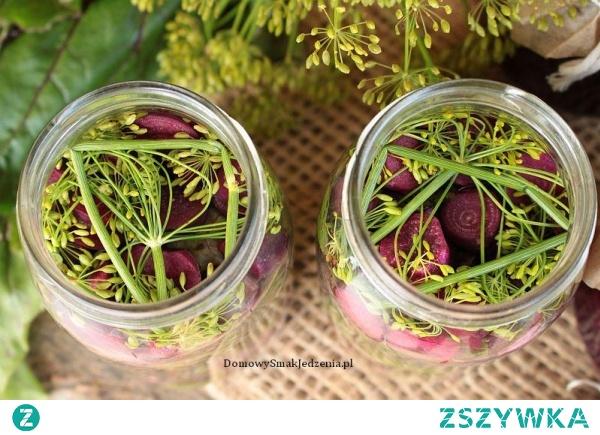 kiszone liście buraka – botwina
