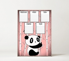 Plan lekcji A3. Panda