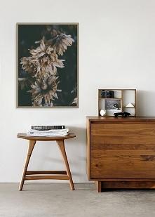 Plakat skandynawski botaniczny Dried Flowers
