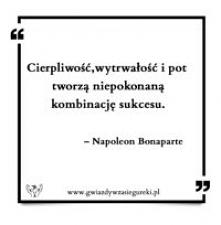 Cierpliwość, wytrwałość i pot tworzą niepokonaną kombinację sukcesu.   – Napoleon Bonaparte