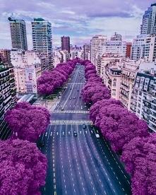 Niesamowita układanka > Buenos Aires - stolica Argentyny ❤️