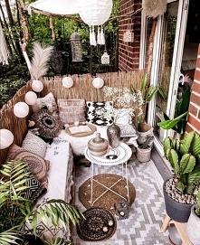 #balkon #rosliny