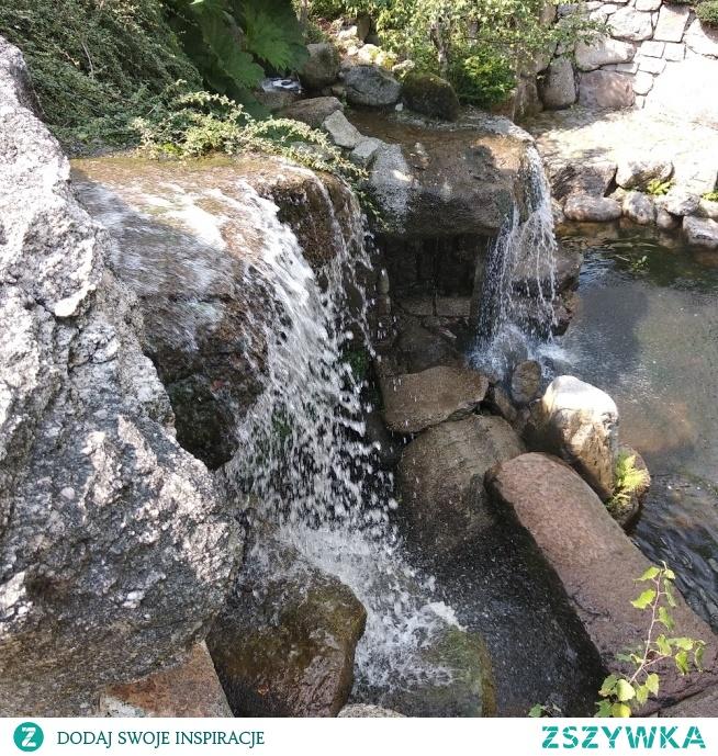 Ogród japoński 'Siruwia'