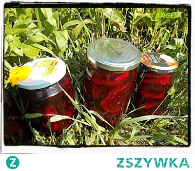 Kiszone buraki - Sour Beetroots Recipe -Barbabietole rosse in salamoia