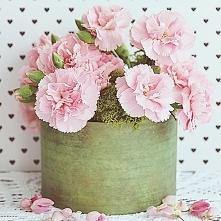 Co to takiego ten flower box? Nic innego jak właśnie kwiaty ułożone w pudełku. Znakomity na prezent, stanowi też ładną oprawę bukietu kwiatów, jako dekoracja  w domu.
