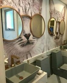 #toaleta#wnętrze#kot#mieszkanie#toilet#dom#łazienka#pomysł#inspiracja