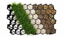 Jak i kiedy stosować kratki trawnikowe? Dowiedz się więcej o tym rozwiązaniu.