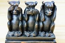 Symbolika trzech małpek - n...
