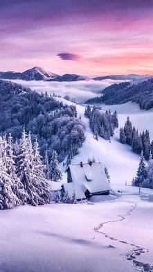 Każda pora roku jest fajna, ładna  i w ogóle, ale ja tylko kocham zimę jest w...