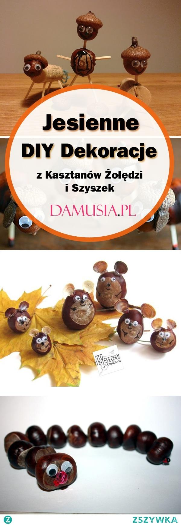 TOP 20 Inspiracji na Jesienne DIY Dekoracje z Kasztanów Żołędzi i Szyszek – Idealna Zabawa dla Dzieci!