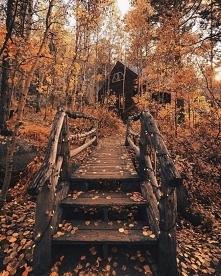 Autumn mood ❤️