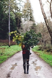 Jesienne róże *