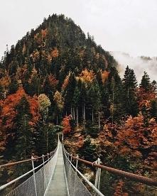 Most do Nibylandii ;)
