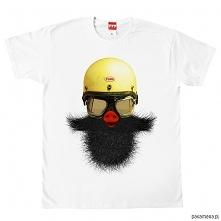 koszulka ŚWINIOBRODY tshirt