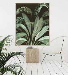 Grafika | 100x70 cm