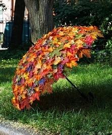 Jesienna parasolka