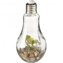 Lampa Stołowa Plant II