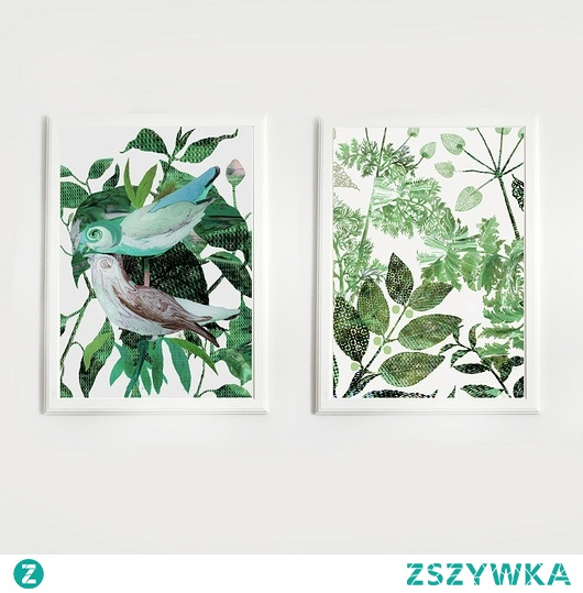 2 ilustracje botaniczne | A3