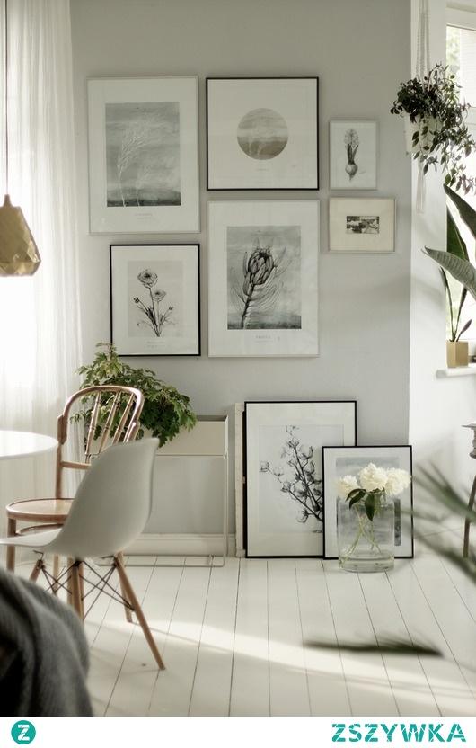 Protea  print 50x70 cm