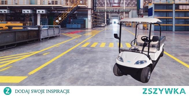 Wózek golfowy pojazd elektryczny