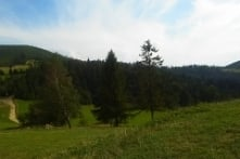Piękne lato na Hali Boracze...