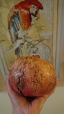 Owocowy granat , 900 gr . zdrowia w soczystych ziarenkach . Długa młodość skóry i obecnie w sezonie.