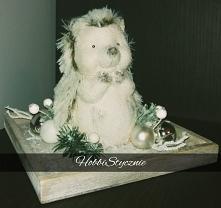 Jeżyk w świątecznym wydaniu :)