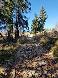 droga na Skrzyczne