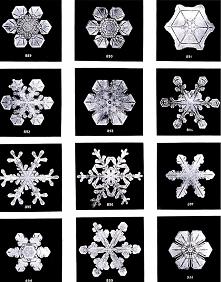 Sfotografowane płatki śniegu ☆