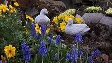 #Wielkanocnedekoracje#  ozd...
